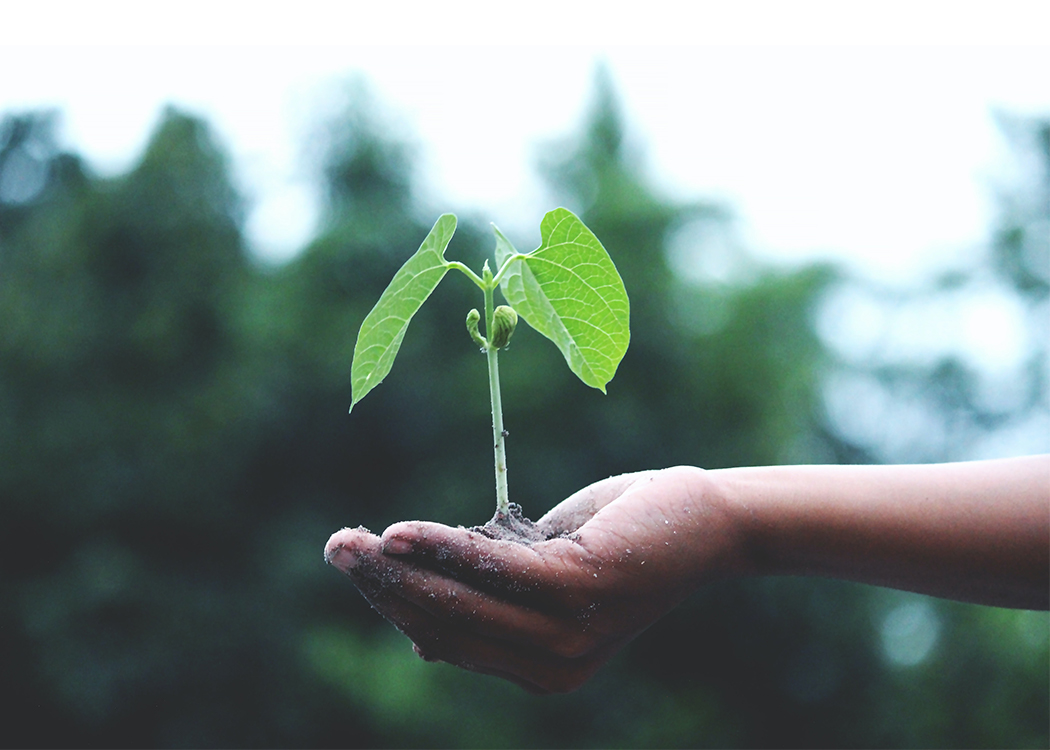 Therma's environmental impact
